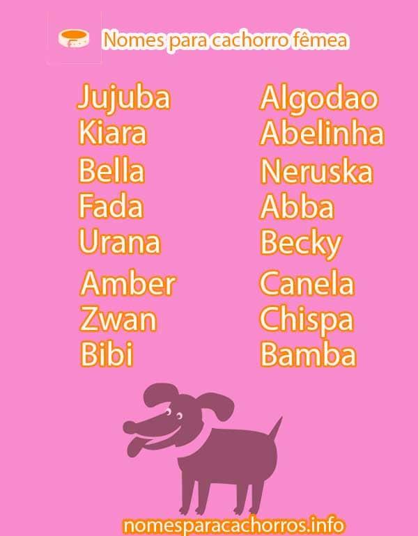 Nomes para cachorro fêmea