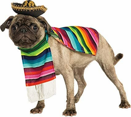 Nomes mexicanos para cachorros