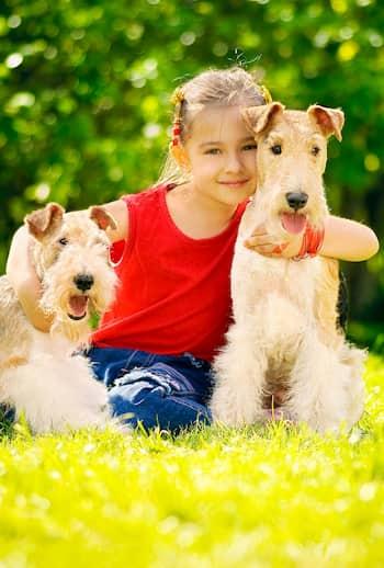 nomes para casal de cachorros